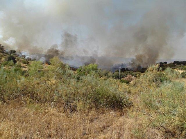 Incendio de Villanueva del Rey