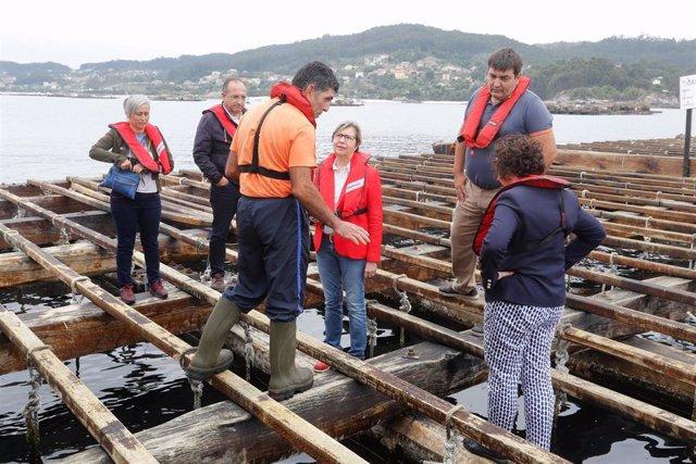 La conselleira do Mar, Rosa Quintana, visita una batea en Aldán (Cangas)