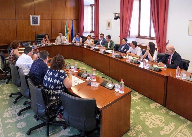 Reunión de la Diputación Permanente del Parlamento andaluz