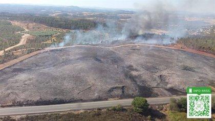 Extinguido el incendio forestal de Valverde del Camino (Huelva), que afecta a unas 8,2 hectáreas