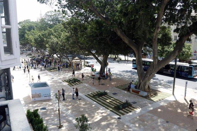 Renovación de la Alameda Principal de Málaga