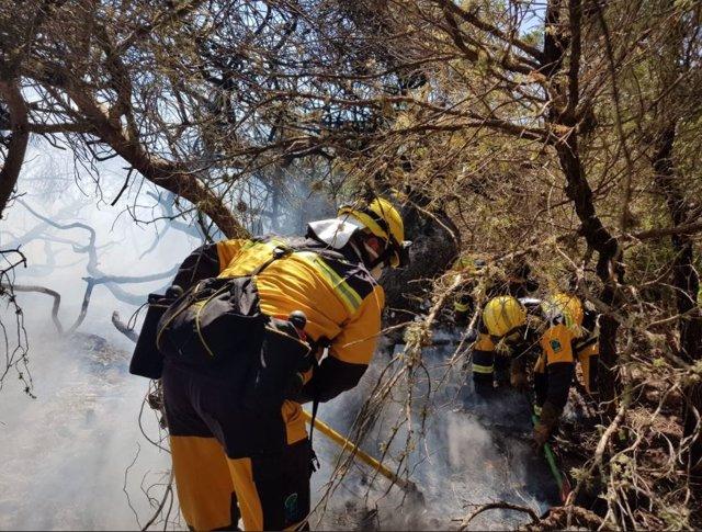 Imatge de l'incendi forestal declarat a Ses Covetes