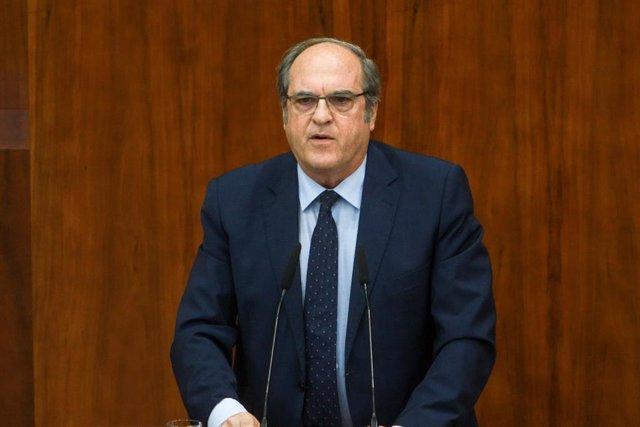 El portavoz del PSOE en la Asamblea de Madrid, Ángel Gabilondo, interviene durante el debate del segundo pleno de la investidura de la candidata del PP a la Presidencia de la Comunidad de Madrid.