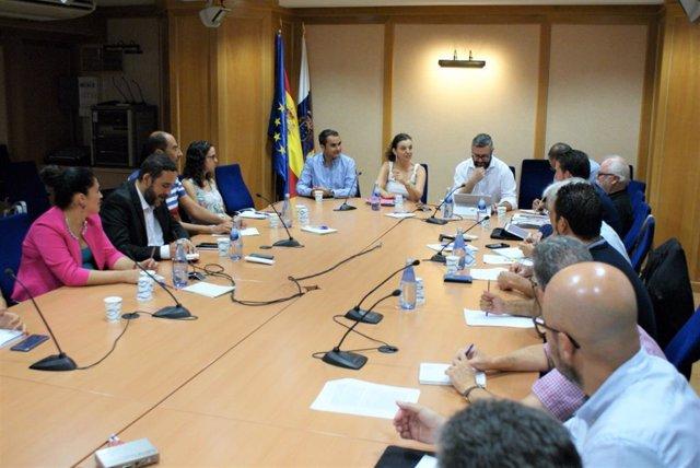 Reunión entre representates del Cabildo de Tenerife y el Gobierno de Canarias sobre la plaga de termitas que afecta a los municipios de Tacoronte, La Laguna y Tegueste