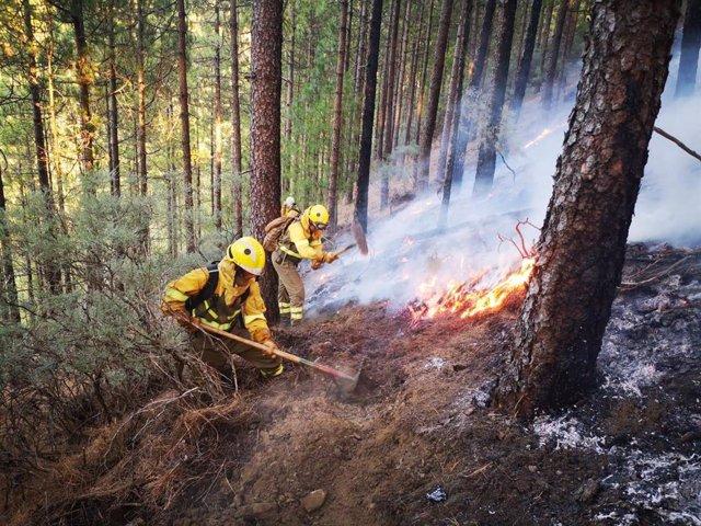 Finaliza la Alerta por Riesgo de Incendios Forestales en El Hierro, La Gomera, La Palma, Tenerife y Gran Canaria
