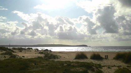 Varios bañistas abandonan el agua en la playa de A Frouxeira tras avistar tiburones marrajo