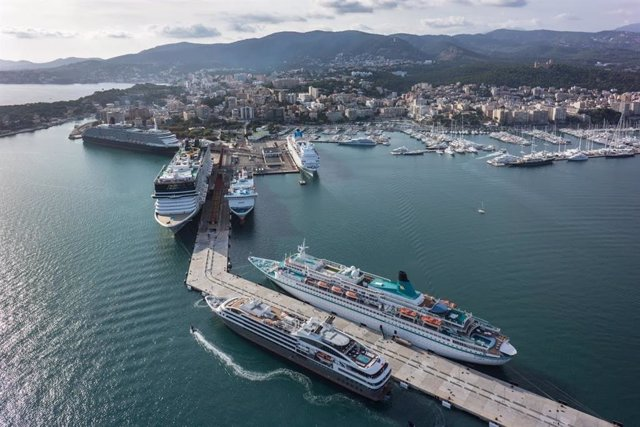 Creuers en el port de Palma de Mallorca