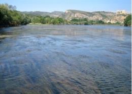 Aguas urbanas con ecosistemas dañados