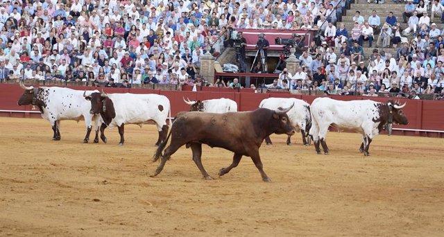 Imagen de recurso de corrida de abono de la Feria de Abril con toros de Miura.