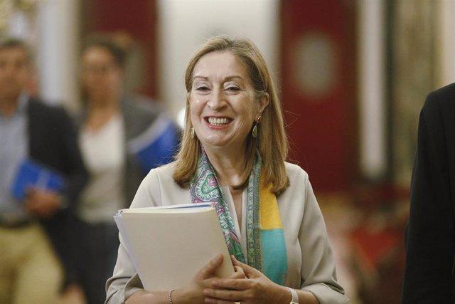 La diputada gallega Ana Pastor.