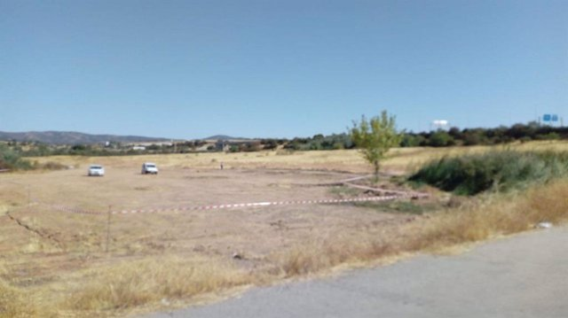 Camino central del Parque de Levante