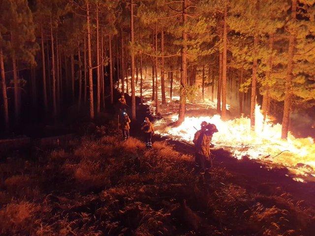 Incendios.- La Delegación del Gobierno pide el traslado a Gran Canaria de hasta 600 camas para atender a los evacuados