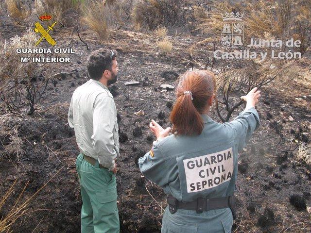 Incendio forestal en los montes de Paradilla de Gordón (León) el pasado 3 de agosto.