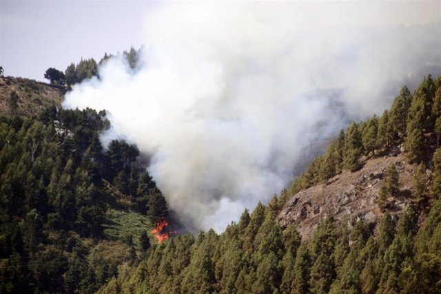 Segunda jornada del incendio de Gran Canaria