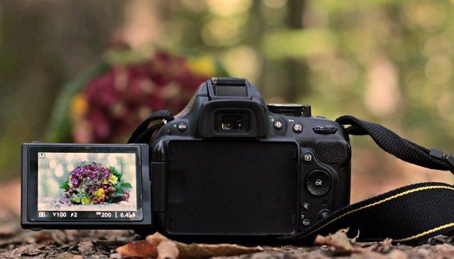 Imágen de recurso de cámaras reflex