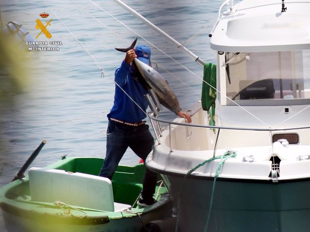 Denunciados dos hombres de 71 y 66 años por pesca furtiva de bonitos en Castro U