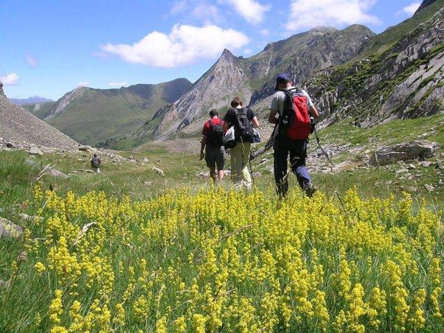 Pirineu català, montanya, excursió, natura