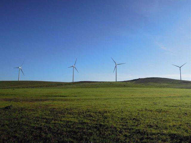 Economía.- Iberdrola cierra tres contratos de suministro de energía 'verde' para