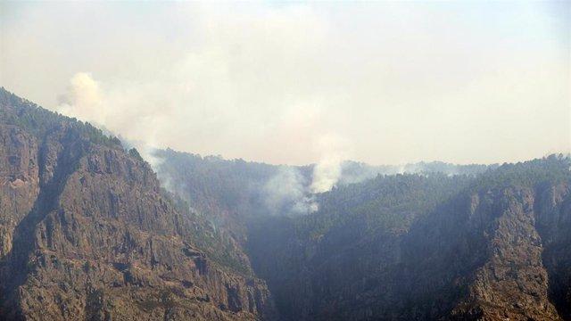 Parte de la zona afectada por el incendio de la isla de Gran Canaria, de la que continúa saliendo humo.