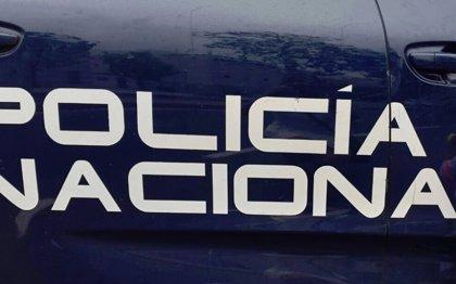 La Policía asiste en Torrent a una mujer herida en la cabeza al caerle una rama de siete metros