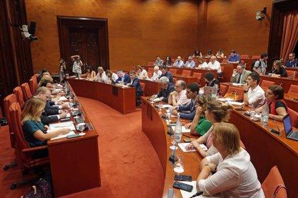 """CatECP pedirá al Parlament acceder a los """"planes de contingencia"""" del Govern en empresas públicas"""