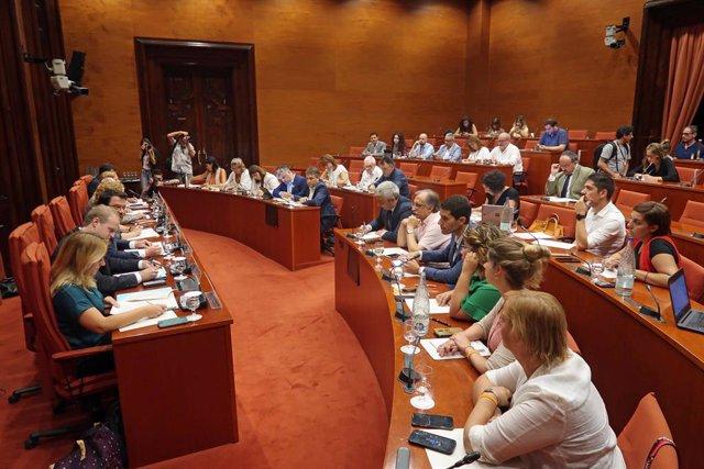 Compareixença del vicepresident de la Generalitat, Pere Aragonès, davant la Comissió d'Economia del Parlament.