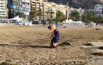 Las playas de Alicante, recuperadas al 80% tras el temporal de lluvia