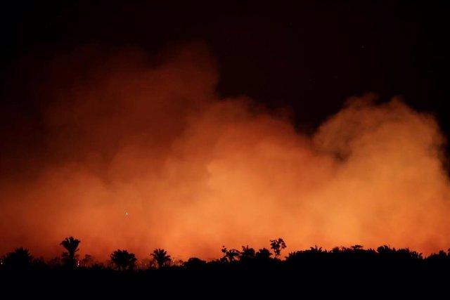 Incendio forestal en la selva del Amazonas