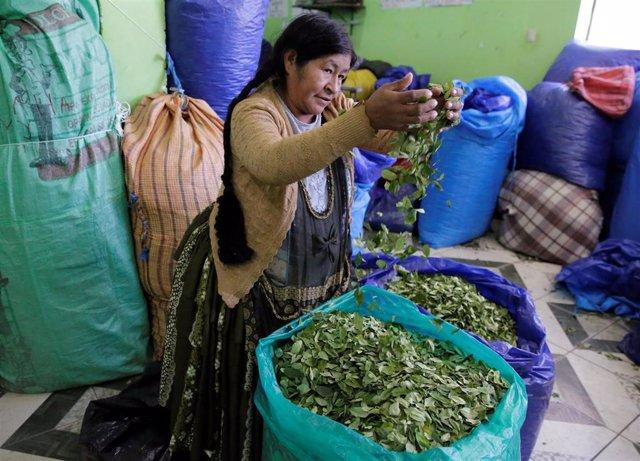 Mercado de hoja de coca en La Paz (Bolivia)