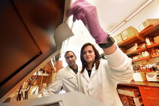 Dra. Satya Ande, bióloga molecular en el Departamento de Bioquímica y Biología Molecular de MCG y el Centro de Cáncer de Georgia y becario postdoctoral de MCG, Dr. Manali Dimri en el laboratorio del Centro de Cáncer de Georgia.