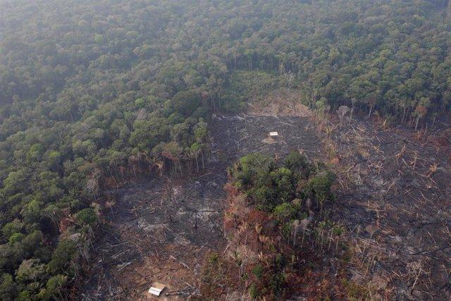 Vista aérea de una zona deforestada en el Amazonas