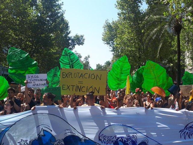 Concentració a Barcelona pels incendis en l'Amazones