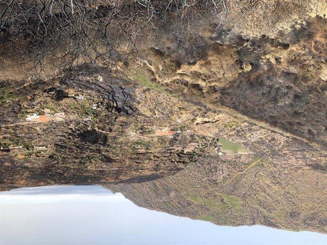 Zona afectada por el incendio de Gran Canaria cerca de Risco Caído