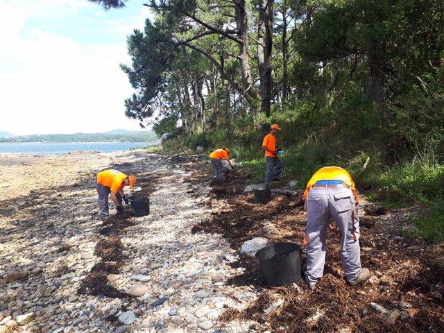 Descienden en un 85% las colillas depositadas en los arenales de las illas Cíes tras las campañas de concienciación