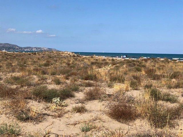 Playa Serradal