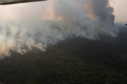 """Brasil.- El ministro de Medio Ambiente de Brasil cree """"una bobada"""" """"eso de que el Amazonas pertenece a la Humanidad"""""""