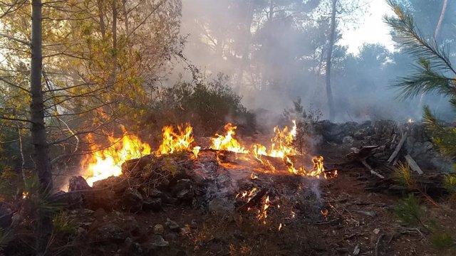Incendio declarado en Son Quint, Esporles.