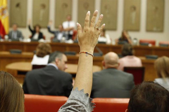 Una de las componentes de la Diputación Permanente durante una votación