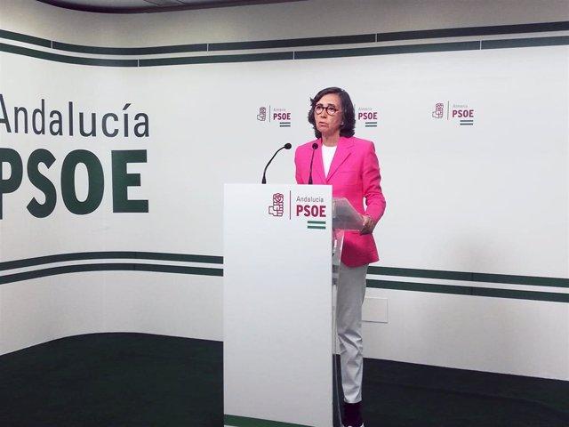La portavoz adjunta del Grupo Parlamentario Socialista, Rosa Aguilar, en rueda de prensa en Almería