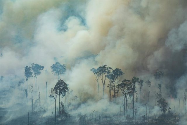 HANDOUT - 24 August 2019, Brazil, Rondonia: Smoke rises from the forest during a fire near the town of Caneiras do Jamari in Rondonia. The Brazilian government began deploying troops to help fight wildfires in Brazil's Amazon region. Photo: Victor Moriyam