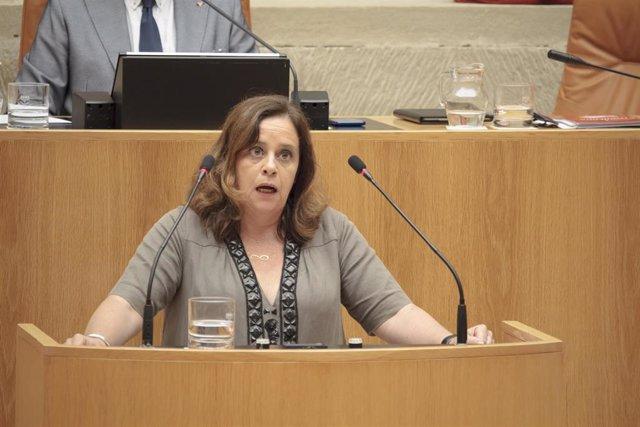 La diputada de IU en La Rioja, Henar Moreno Martínez, durante su intervención en la segunda sesión del debate de investidura de la candidata socialista, Concha Andreu, a la Presidencia de La Rioja.