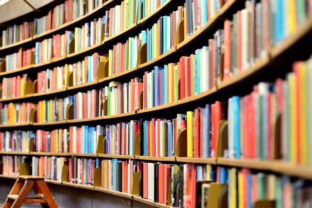 La red de bibliotecas públicas vascas prestaron 2.623.361 libros papel y 57.189 libros en formato digital durante 2018