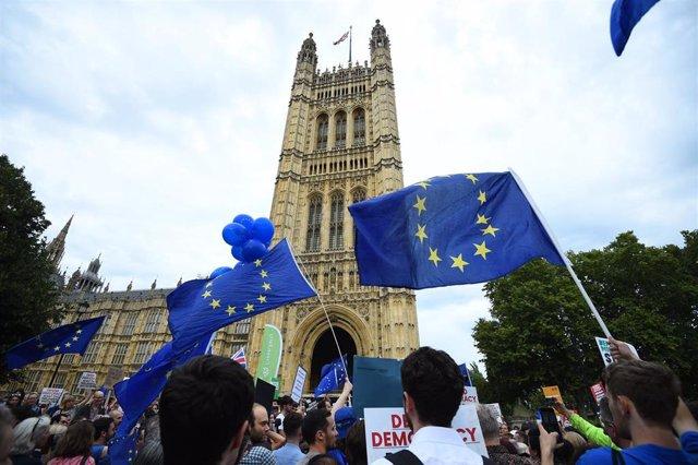 Manifestación frente al Parlamento contra la suspensión solicitada por Johnson