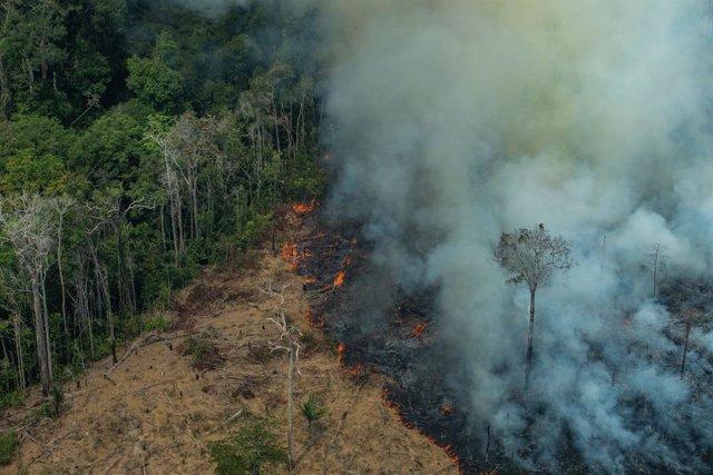 Brasil.- Bolsonaro prohíbe durante 60 días las quemas en todo Brasil para combat