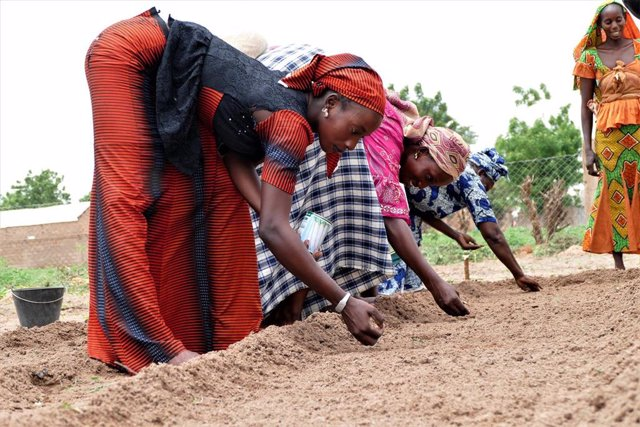 Agricultoras senegalesas en un huerto creado junto con la ONG aragonesa ARAPAZ.