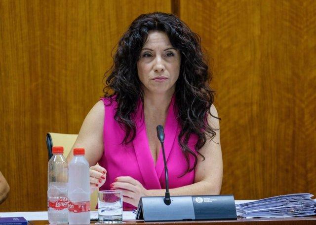 La consejera de Igualdad, Políticas Sociales y Conciliación, Rocío Ruiz, en comisión parlamentaria.