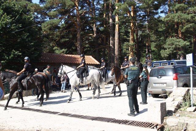 Continúan los trabajos de búsqueda de la esquiadora y medallista olímpica, Blanca Fernández Ochoa, en la sierra de Madrid