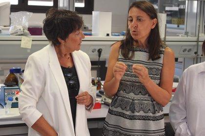 """La directora del INIA atribuye la listeriosis a """"una mala práctica"""" y no a un problema de seguridad alimentaria"""