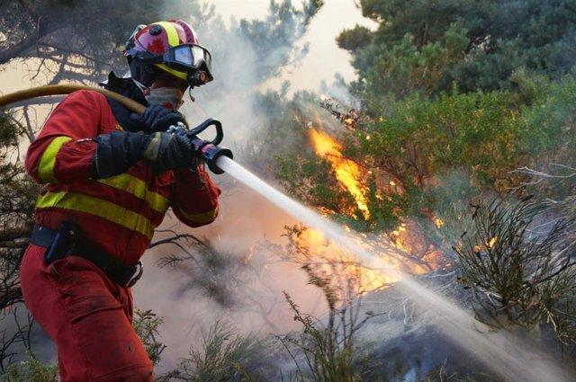 Efectivos de la UME trabajan en las labores de extinción del incendio de La Granja.