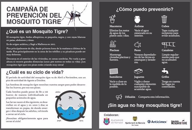 Hoja informativa sobre la campaña de prevención del mosquito tigre